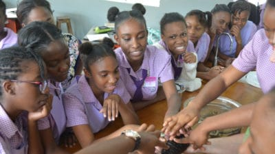 Intern Maggie Dillon - Photo 1 - Students at St. Hilda's High school reach in to gently touch the slimy skin of a sea cucumber.