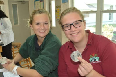 B.A.M. and J.A.M.I.N. – Image 1 - Forest Heights Academy students dissect their mangrove leaves and plate them in agar.