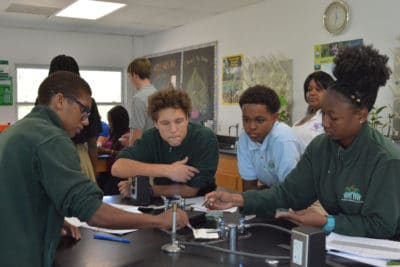 B.A.M. and J.A.M.I.N. – Image 2 - Forest Heights Academy students dissect their mangrove leaves and plate them in agar.