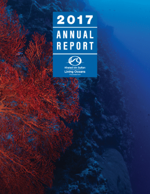 LOF Annual Report 2017 Cover_Page_1