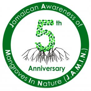 JAMIN 5 Year Logo