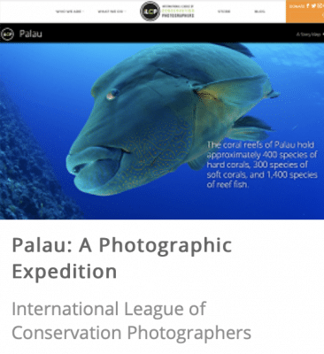 Palau: A Photographic Expedition