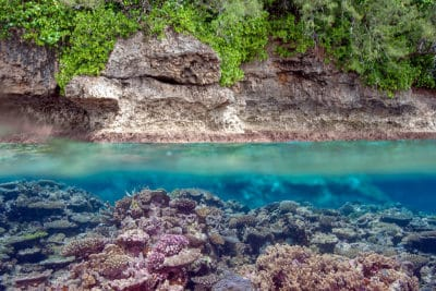 Tonga Over Under