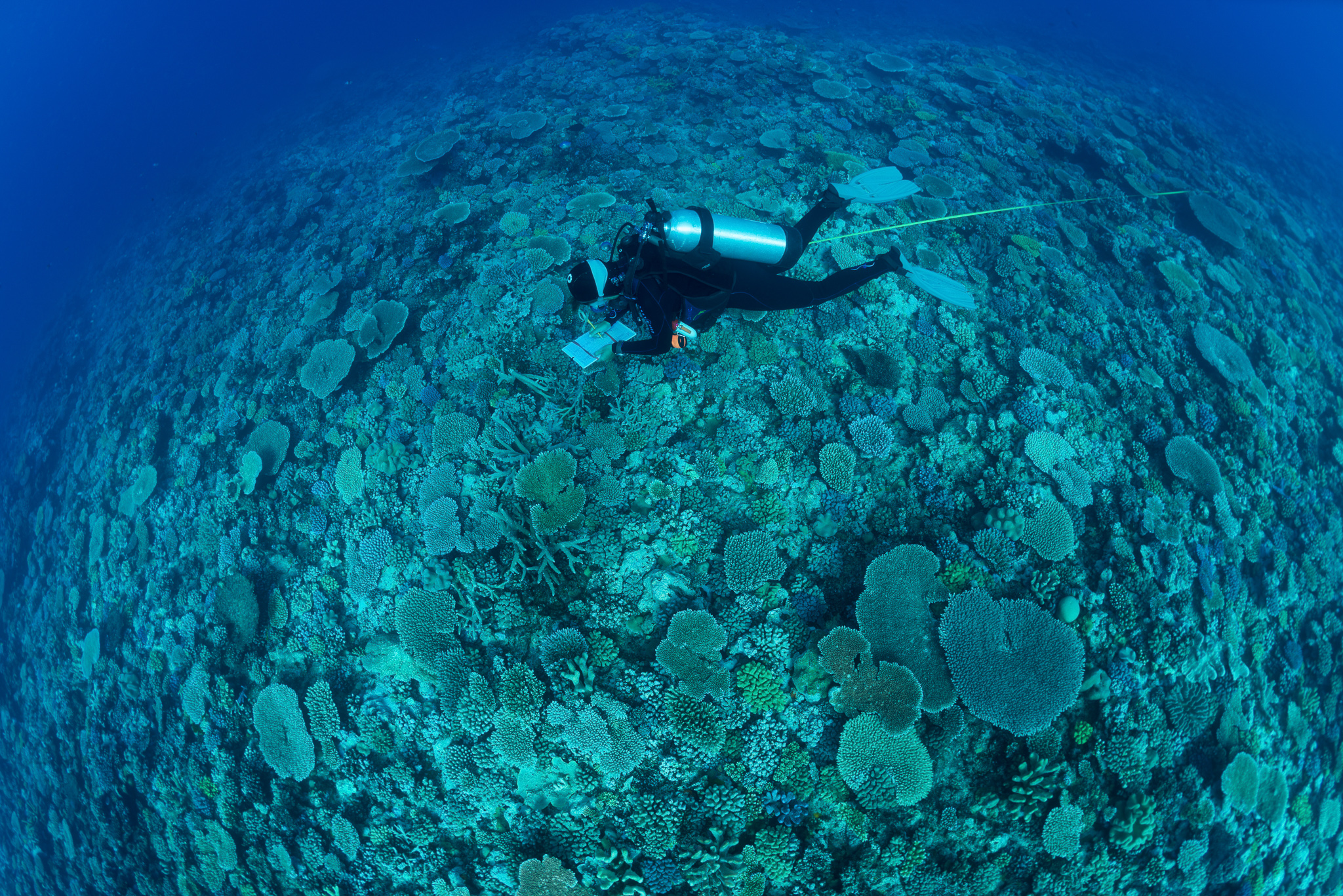 The Global Reef Expedition at the IUCN World Conservation Congress